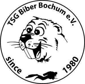 Biber_Logo_2013_bold_transparent